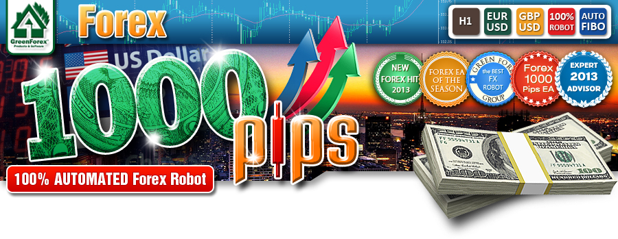 Forex 1000 pips review